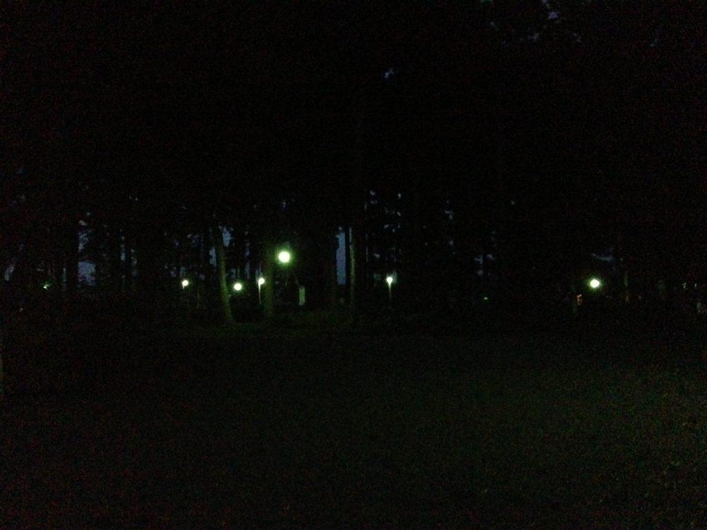 十二月の流星群